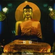 供奉在菩提迦耶的释迦牟尼佛像