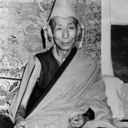 H.H. Kyabje Trijang Rinpoche 3
