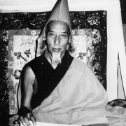H.H. Kyabje Zong Rinpoche 2